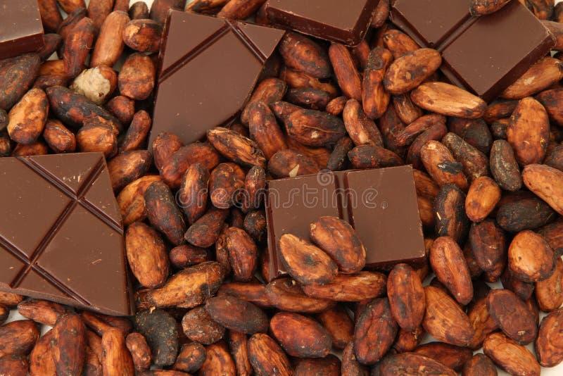 Chocolate fino del origen con los granos de cacao fotos de archivo