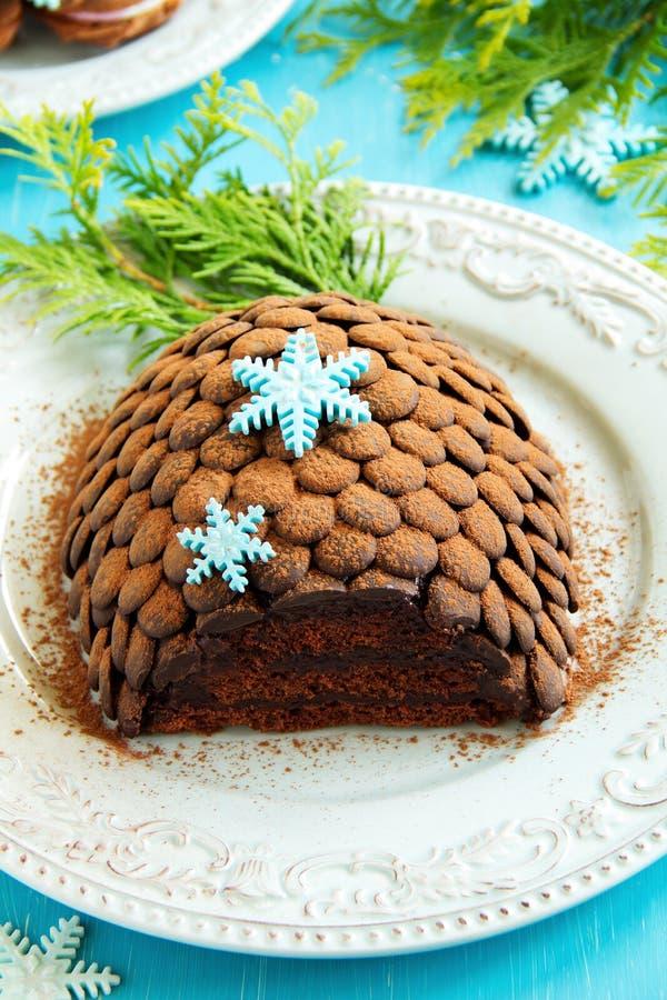 Chocolate fir cone stock photos