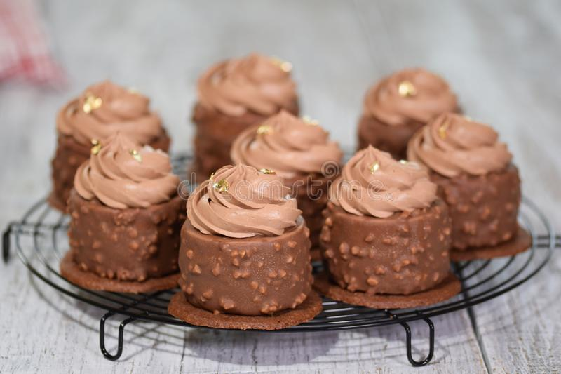 Chocolate Hazelnut Mousse Cakes covered with chocolate glaze. Modern european cake pastry. Modern european cake pastry royalty free stock photos