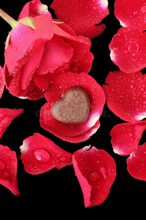 Chocolate heart and red rose stock image