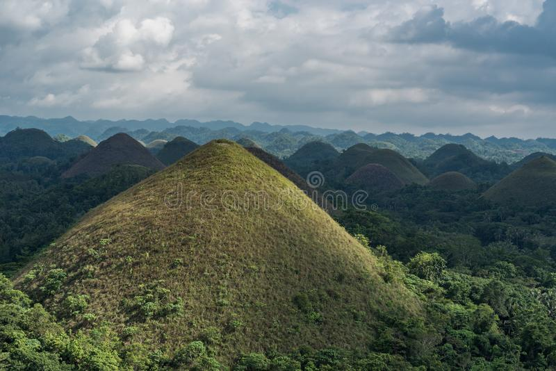 Chocolate hills in Bohokl, Philippines. There are at least 1,260 hills but there may be as many as 1,776 hills. One the most famous sightseeing object in royalty free stock image