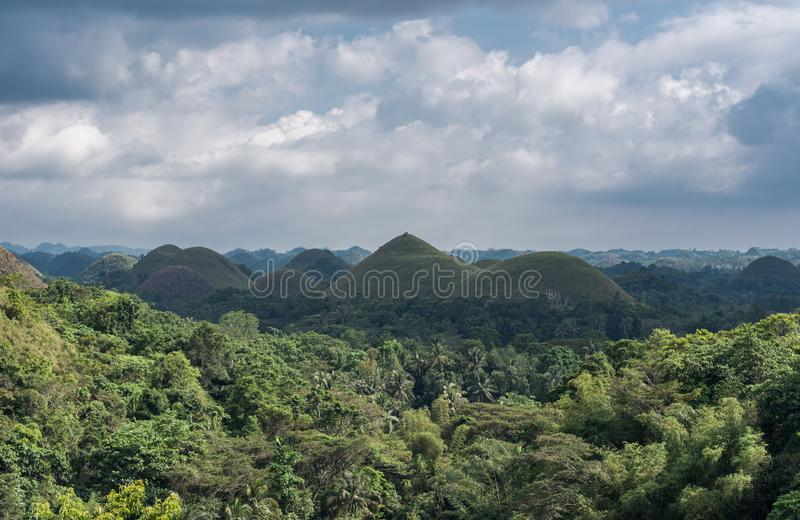 Chocolate hills in Bohokl, Philippines. There are at least 1,260 hills but there may be as many as 1,776 hills. One the most famous sightseeing object in royalty free stock photos