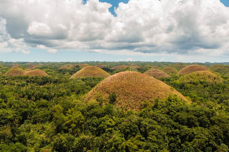 Chocolate Hills in Bohol, The Philippines. Amazing landscape of hundreds of brown hills royalty free stock photo