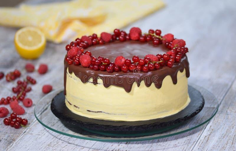 Chocolate honey layer cake Medovik with summer berries stock photo