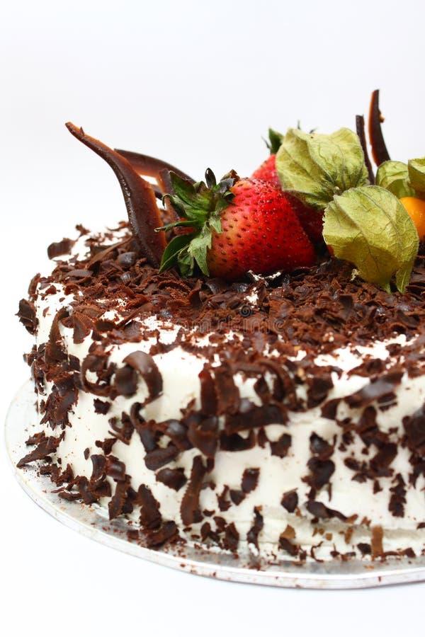 Chocolate Layer Cake royalty free stock image