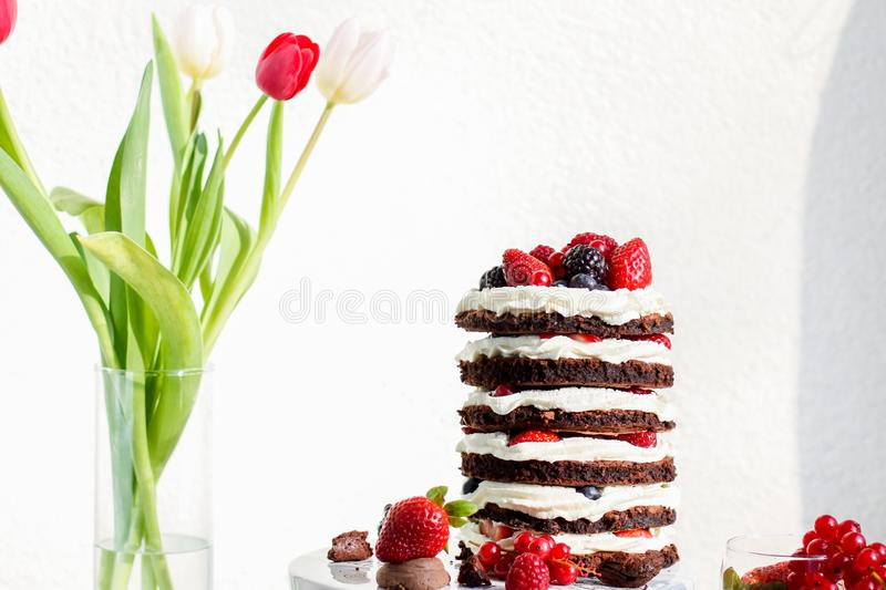 Chocolate layer cake royalty free stock images