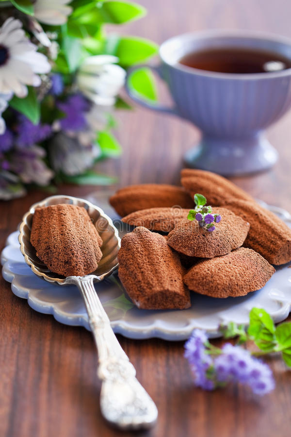 Chocolate madeleine cookies royalty free stock image