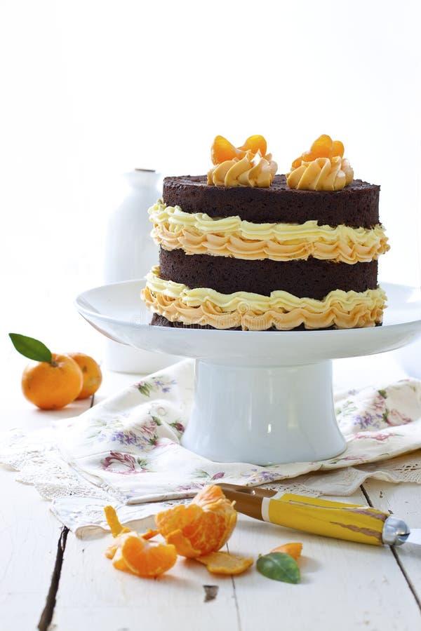 Chocolate and mandarin cake royalty free stock photography