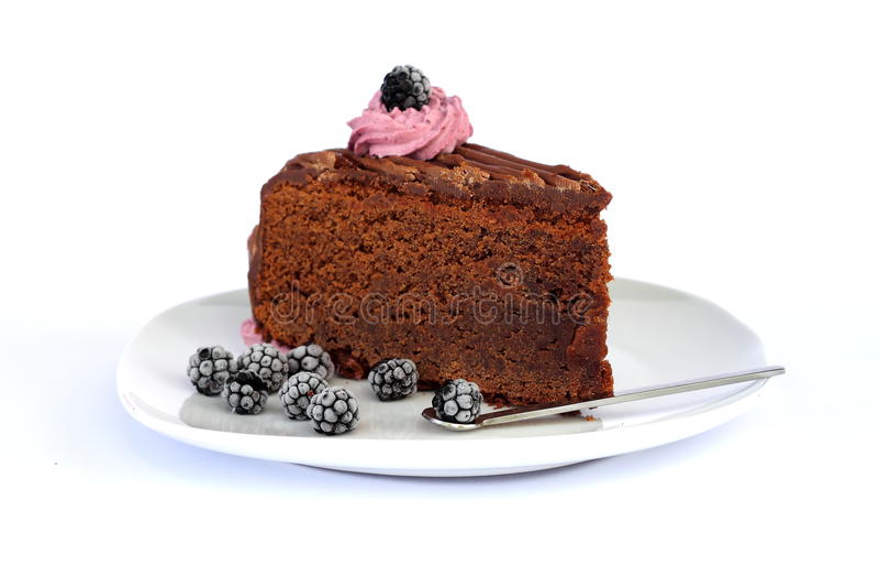 Chocolate mud cake. Delicious slice of a chocolate mud cake stock image