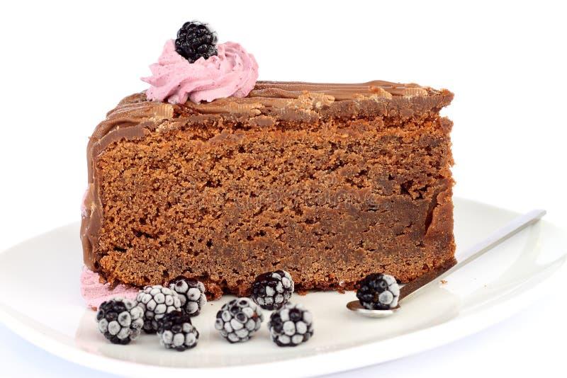 Chocolate mud cake. Delicious slice of a chocolate mud cake stock photos