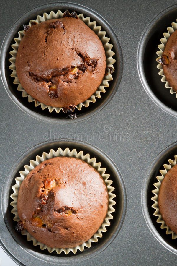Chocolate muffin in baking tray royalty free stock images