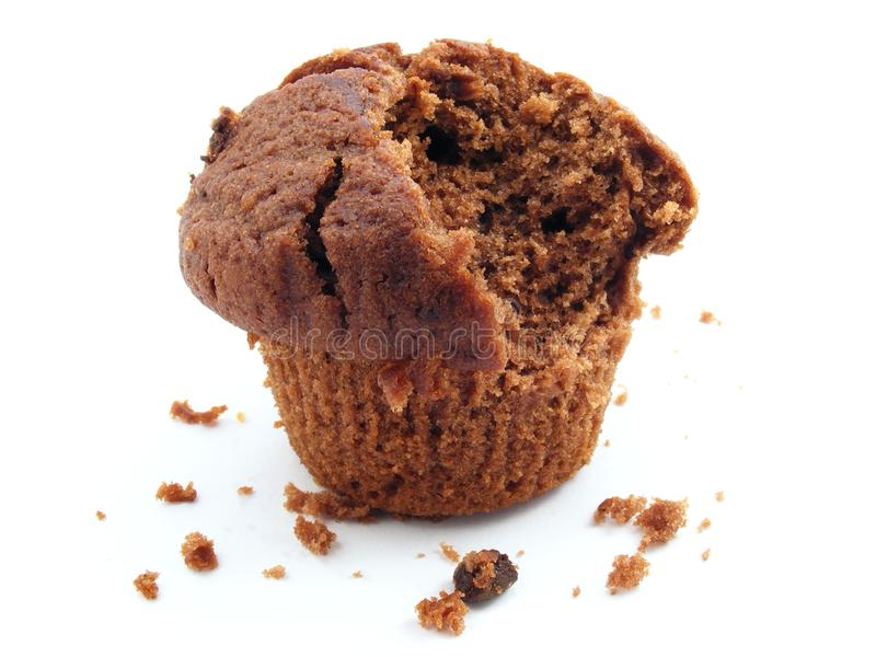Chocolate muffin close up royalty free stock photography