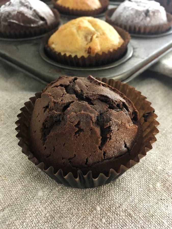 Chocolate muffin close up stock image
