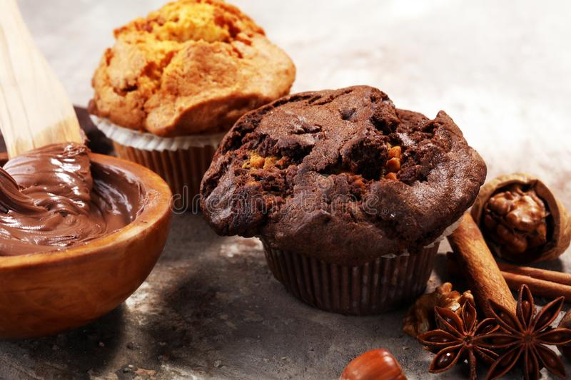 Chocolate muffin and nut muffin, homemade bakery on grey background stock photos