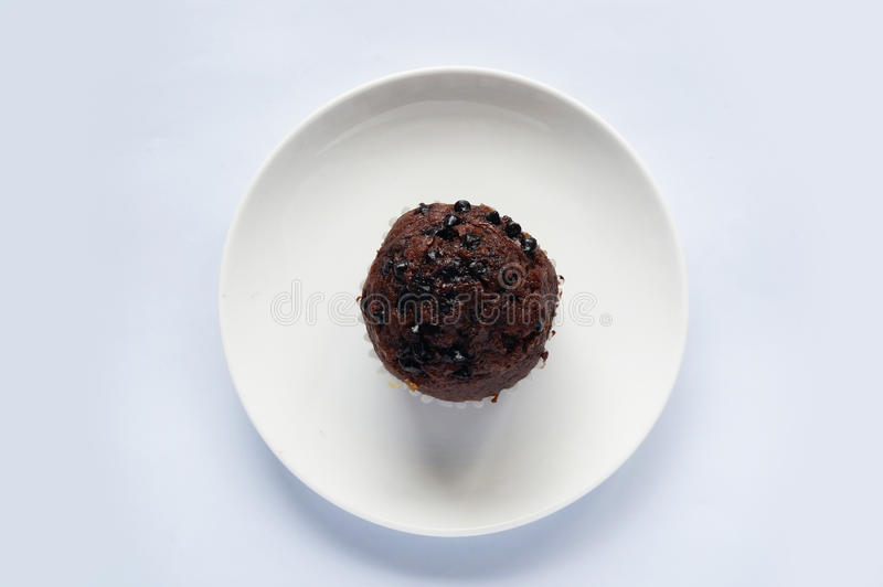 Chocolate muffin stock images