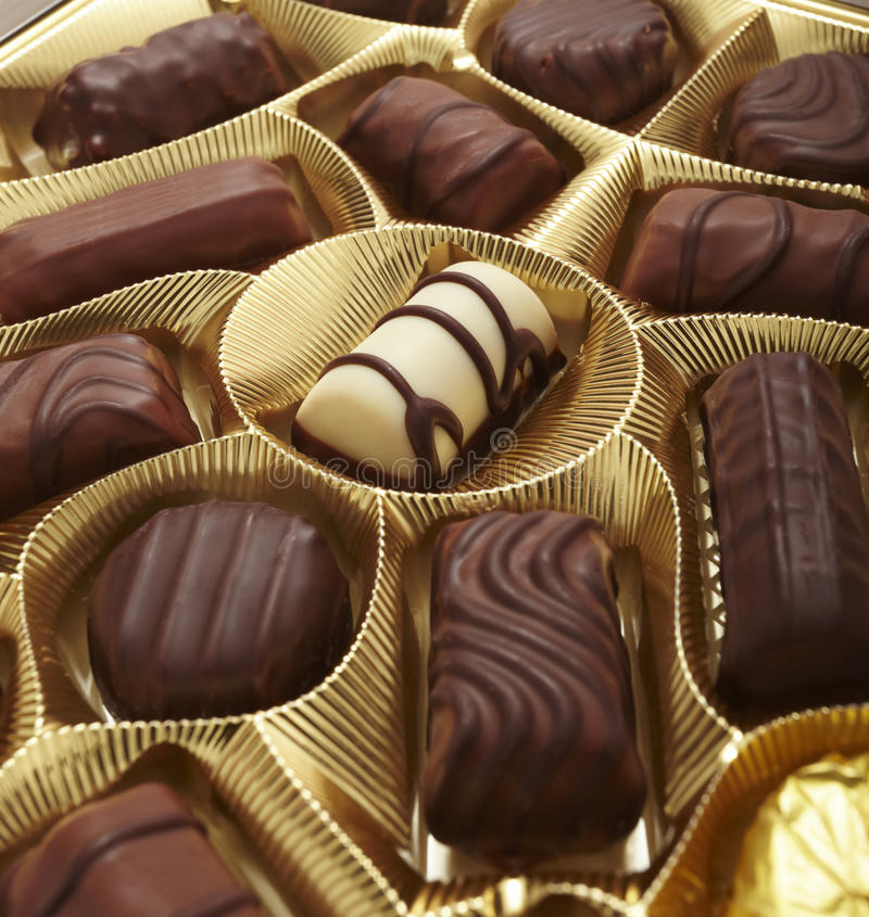 Free Chocolate Muffin Sweet Cake Food Dessert Praline Stock Image - 11563681