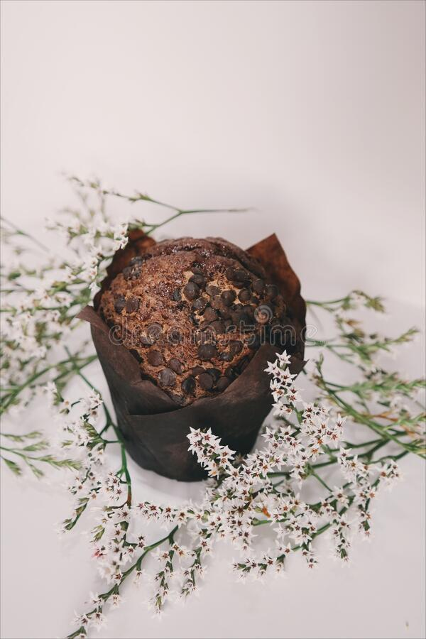 Chocolate Muffin Top With Chocolate Chips Free Public Domain Cc0 Image
