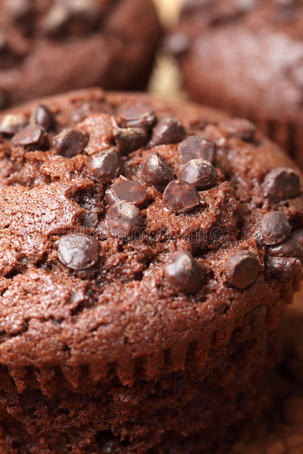 Download Chocolate muffins stock image. Image of single, studio - 22845347