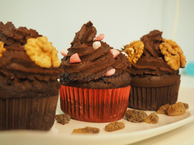 Chocolate muffins for the holiday table royalty free stock photography