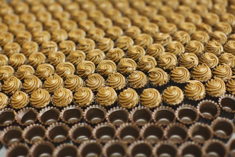 Chocolate pralines filled with nougat creme stock image