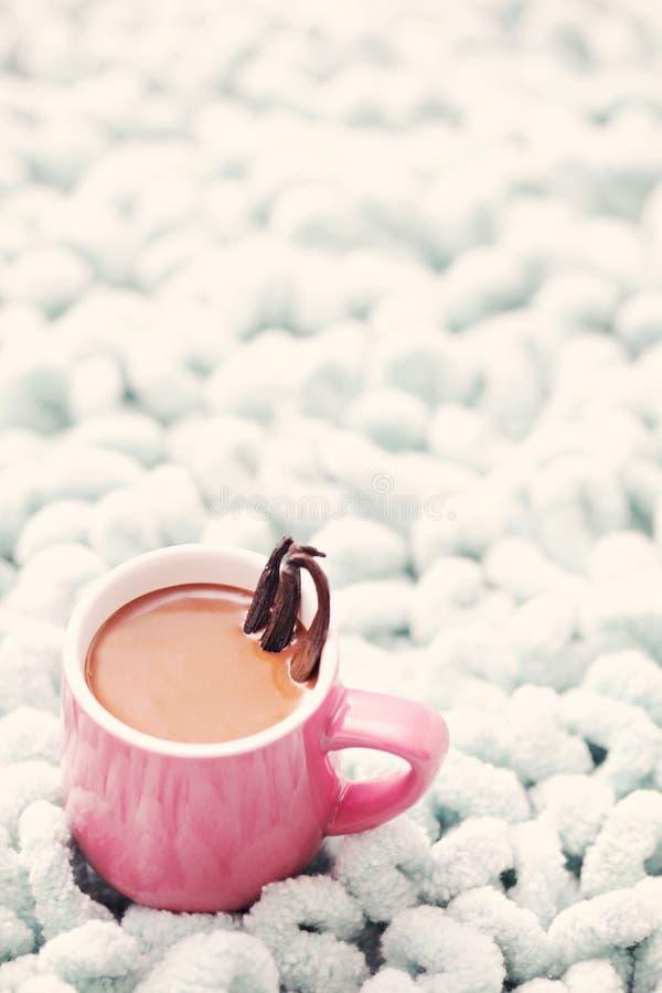 Chocolate quente com baunilha imagem de stock royalty free