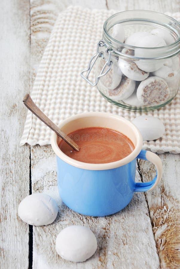 Chocolate quente com biscoitos imagens de stock royalty free