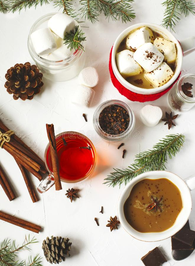 Chocolate quente com picante, os marshmallows e chá picante imagem de stock royalty free