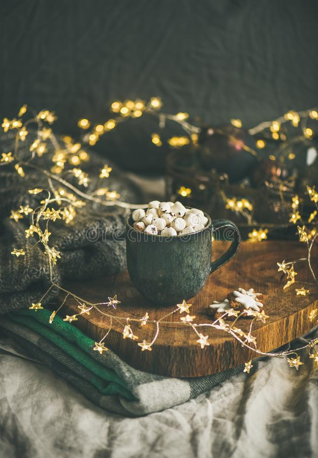 Chocolate quente do inverno do Natal ou do ano novo com marshmallows fotos de stock royalty free
