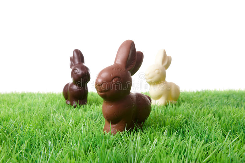 Chocolate Rabbits royalty free stock photo