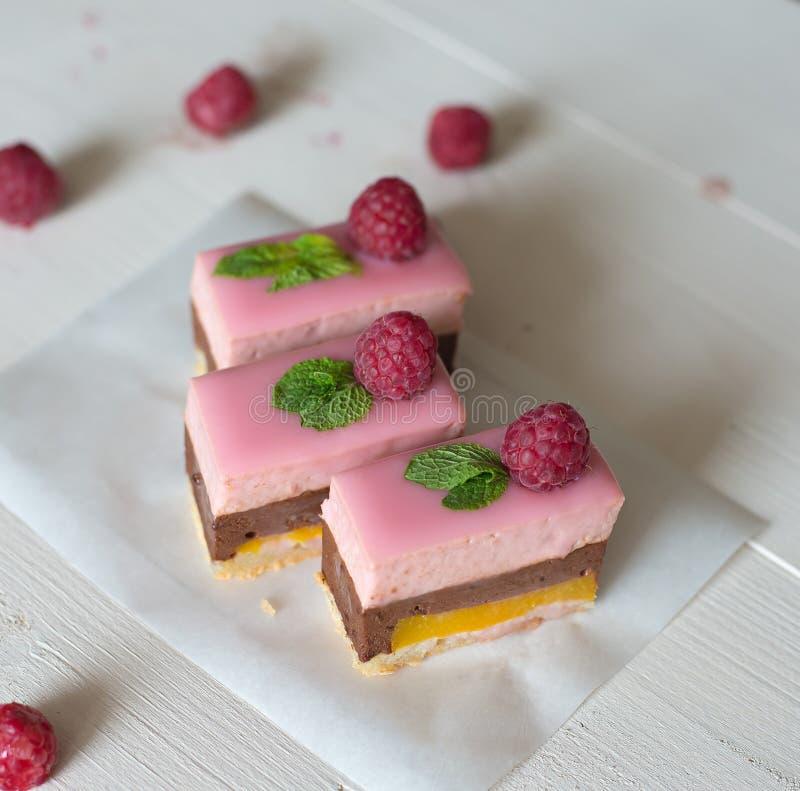 Chocolate & Raspberry cake royalty free stock images