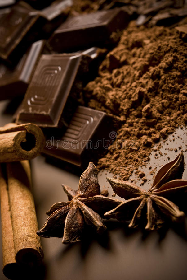Chocolate and spices royalty free stock image