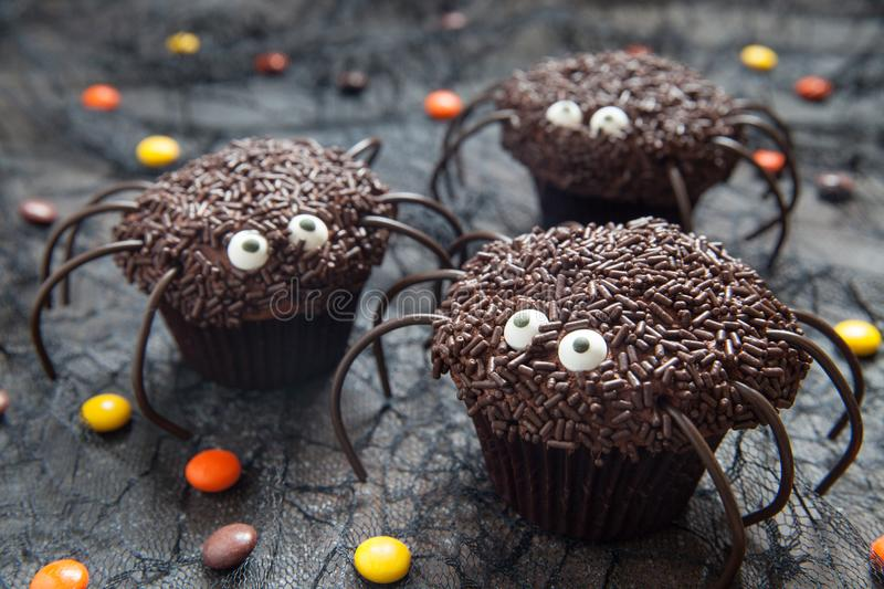 Chocolate spider cupcakes for Halloween party royalty free stock image