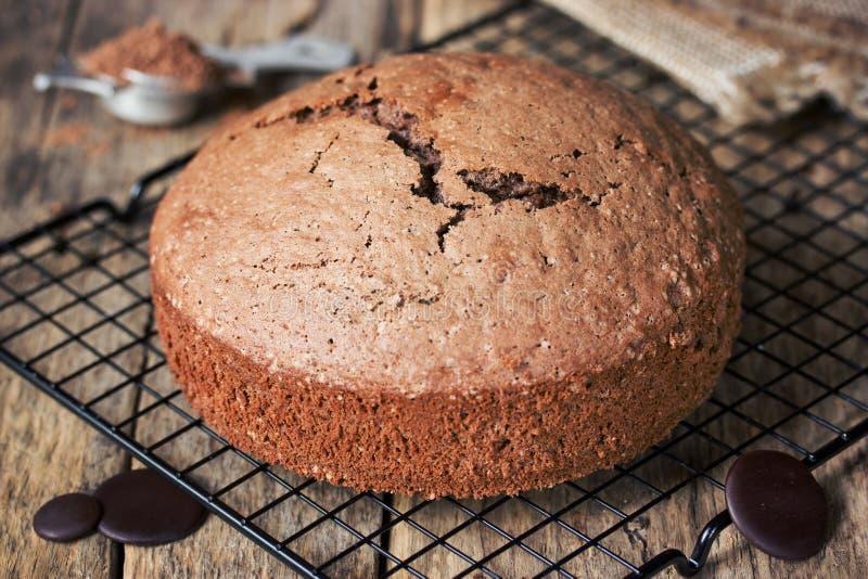 Chocolate sponge cake royalty free stock photos