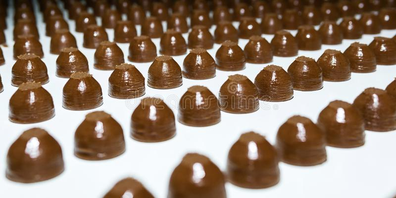 Chocolate toppings on the conveyor of a confectionery factory close-up. Rows of toppings for chocolates on a conveyor belt of a confectionery factory close-up stock photography