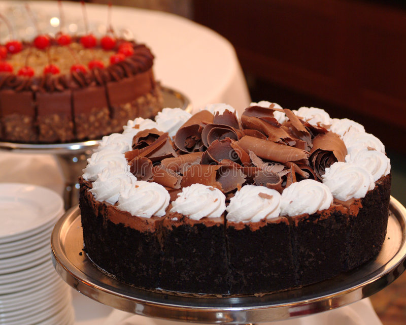 Chocolate torte royalty free stock photography
