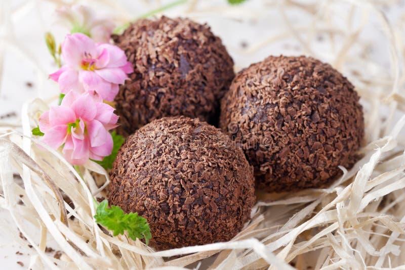 Chocolate truffle royalty free stock images