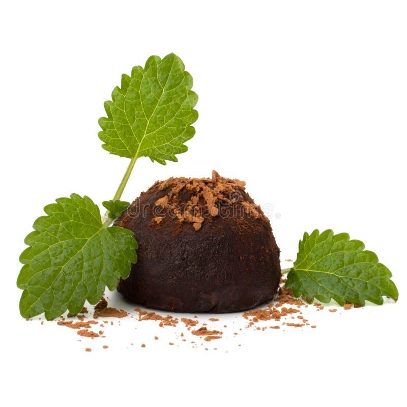 Chocolate truffle candy royalty free stock photos