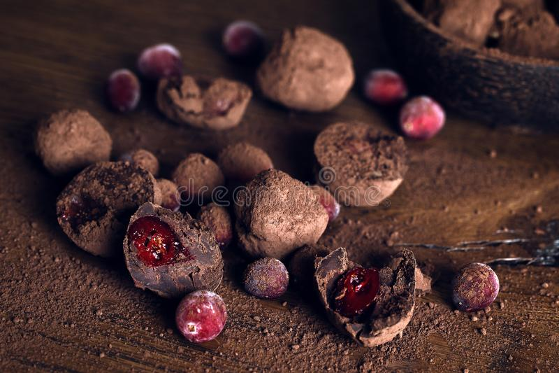 Chocolate Truffle with cranberries royalty free stock photography