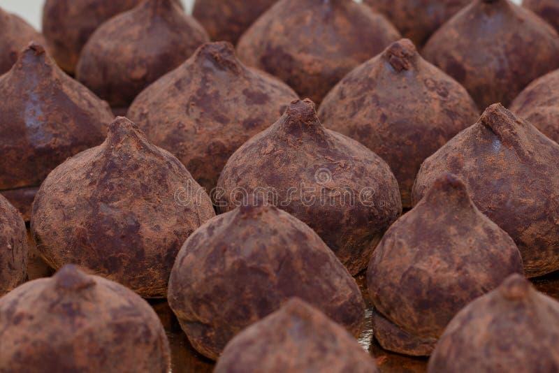 Chocolate truffles closeup horizontal royalty free stock photos