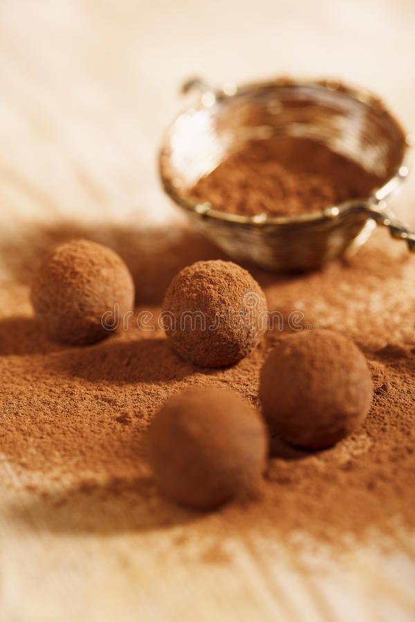 Download Chocolate Truffles Cocoa Powder Dusted And Sieve Royalty Free Stock Images - Image: 18470109