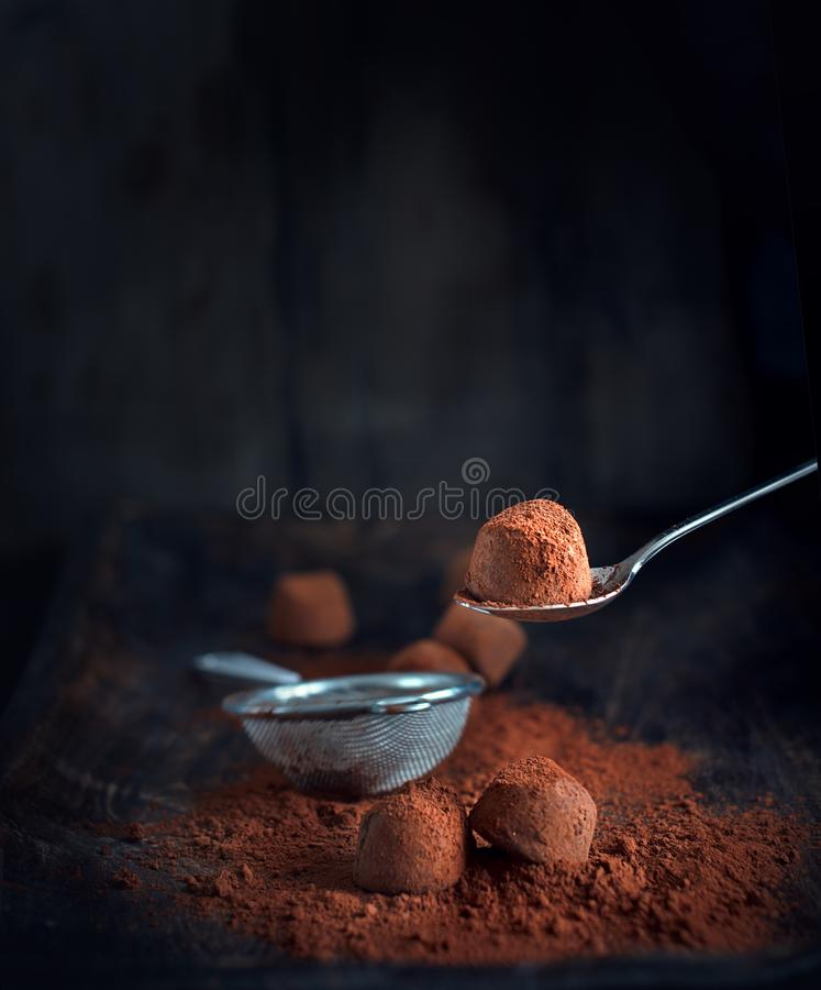 Chocolate truffles. Homemade truffle chocolate candies with cocoa powder royalty free stock photo