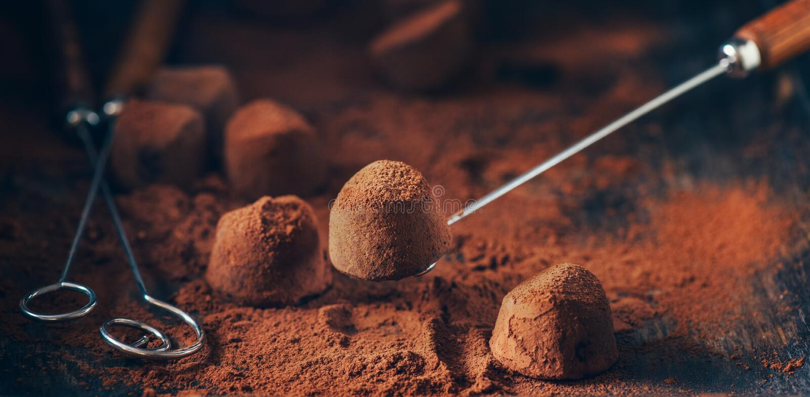 Chocolate truffles. Homemade fresh truffle dark chocolate candies with cocoa powder made by chocolatier royalty free stock images