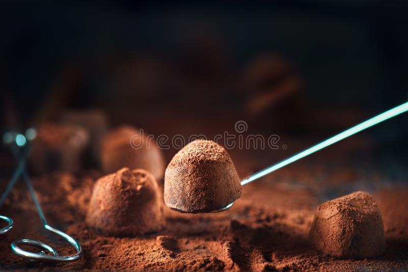 Chocolate truffles. Homemade truffle chocolate candies with cocoa powder royalty free stock images