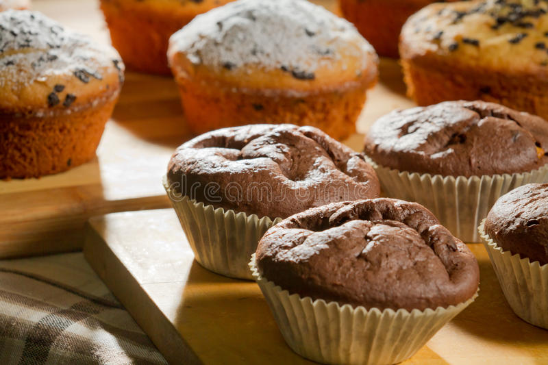 Chocolate and vanilla muffins royalty free stock photo