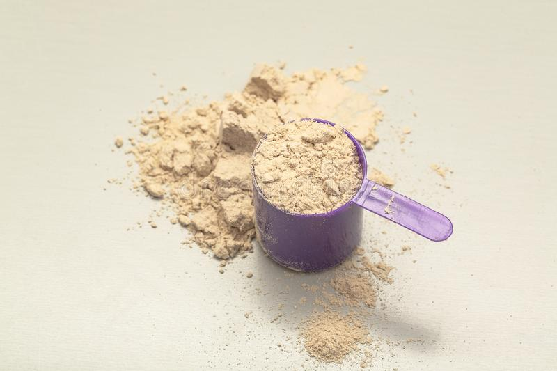 Chocolate whey protein powder with scoop on grey background. Closeup with soft selective focus royalty free stock photos