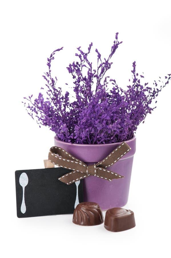 Chocolates e quadro com potenciômetro roxo fotografia de stock royalty free