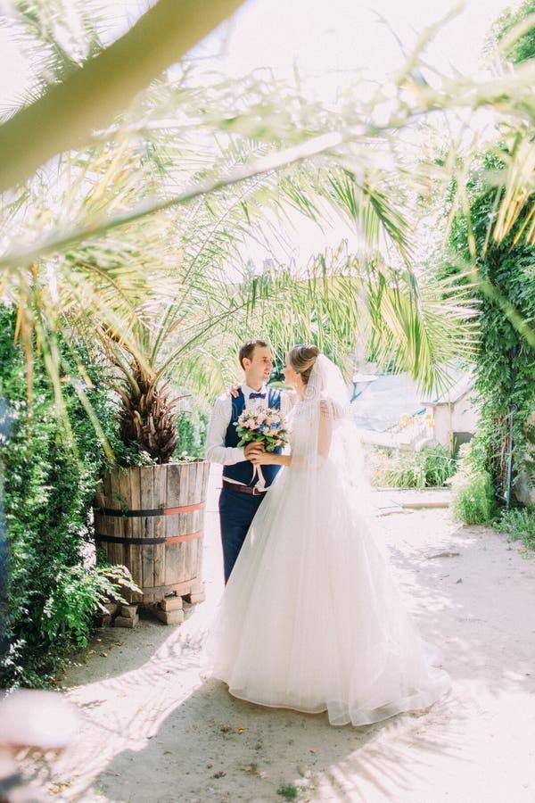 Chodząca nowożeńcy para wzdłuż pięknej szklarni obrazy stock