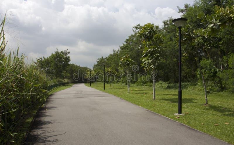 Chodzący ścieżkę i jeździć na rowerze fotografia royalty free
