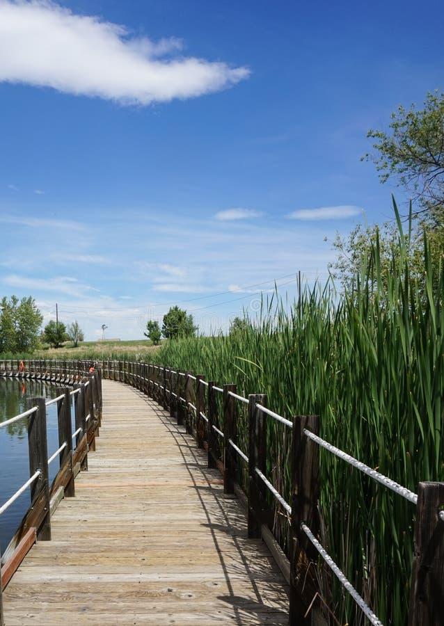 Chodzący most zdjęcia stock