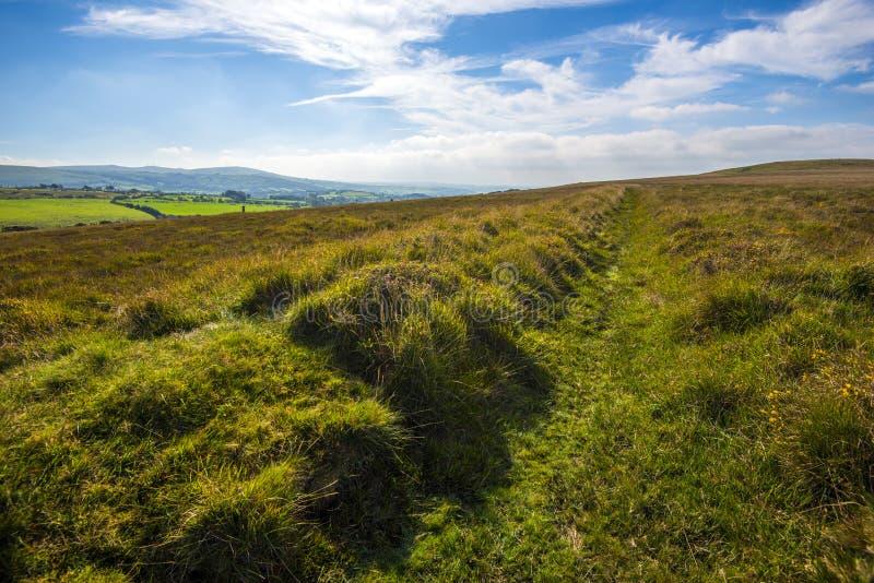 Chodzący na Dartmoor, Devon, Anglia zdjęcia stock